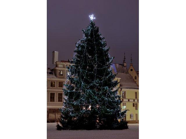 Jõulupuu Raekoja platsil