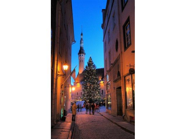Jõuluturg 2008